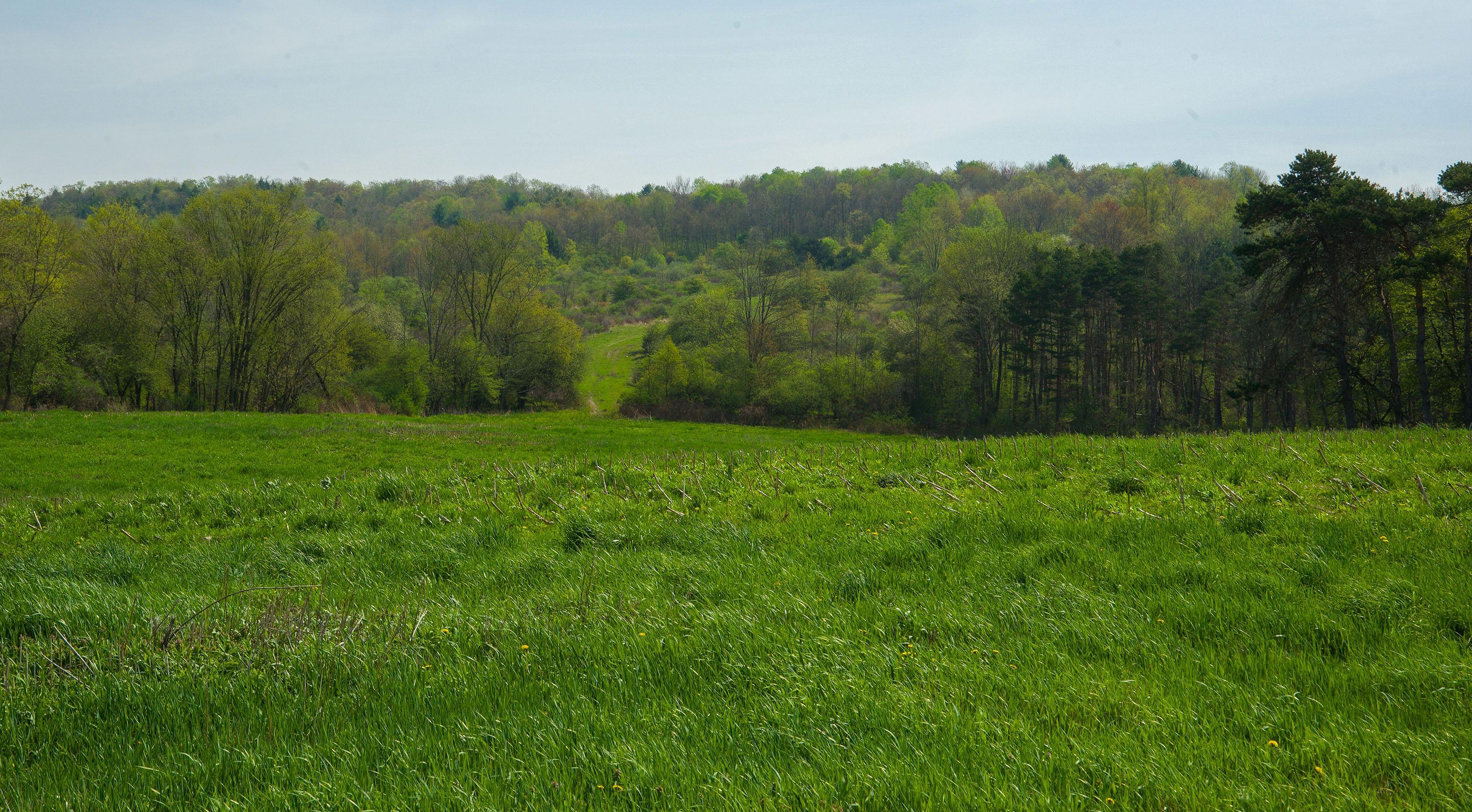 New-York-Land-For-Sale_-81